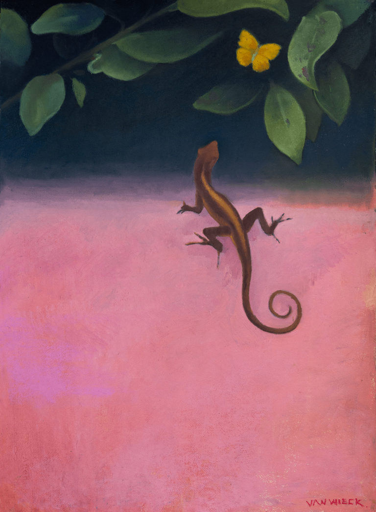 Lizard and the butterfly